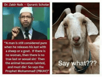 """True, Goat, and Animal: Dr. Zakir Naik Quranic Scholar  """"A man is still considered pure  when he releases his lust with  a sheep or a goat. If there is  no woman, then there is no  true lust or sexual sin! Then  the animal becomes tainted,  hat???  and must die! So says the  Prophet Mohammad! (PBUH!)"""""""
