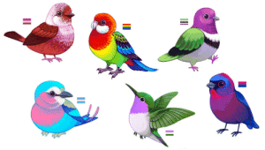 Dove, Google, and Tumblr: draconym: draconym:  I had planned to do something totally different with my day but instead I made a whole bunch of pride birds! I plan to put them on Redbubble asap. Lesbian: pink-headed warblerGay: eastern rosellaBi: varied buntingTrans: lilac-breasted rollerGenderqueer: woodstarAro/ace: pink-headed fruit dove   ADDITIONAL BIRBS Pansexual: oriental dwarf kingfisherNonbinary: gouldian finchAsexual: purple-crowned fairywren