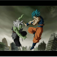 """Creds to 