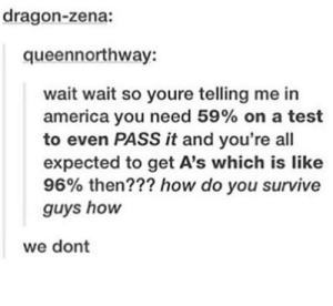 Ladies and gentlemen, I present to you, the American education system.: dragon-zena:  queennorthway:  wait wait so youre telling me in  america you need 59% on a test  to even PASS it and you're all  expected to get A's which is like  96% then??? how do you survive  guys hon  we dont Ladies and gentlemen, I present to you, the American education system.