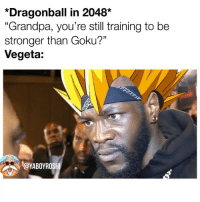 "Dragonball, Goku, and Memes: *Dragonball in 2048*  ""Grandpa, you're still training to be  stronger than Goku?""  Vegeta:  YABOYROSH Had to bless yall with a double post today 🙏🏾😂 btw im mad one of you bum asses reported the credit card post 😭😭 tothisday"