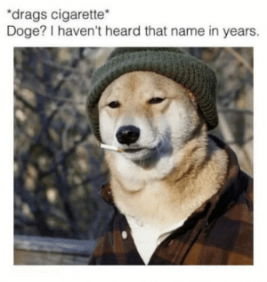 """Doge, Time, and Cigarette: """"drags cigarette*  Doge? I haven't heard that name in years. Time flies"""