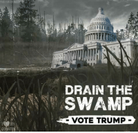 Memes, Trump, and 🤖: DRAIN THE  SWAMP  VOTE TRUMP #VOTE TRUMP!!   ~SS
