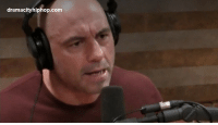 lifepro-tips: Joe Rogan Speaks On People Who Are Racist Against White People!: dramacityhiphop.com lifepro-tips: Joe Rogan Speaks On People Who Are Racist Against White People!
