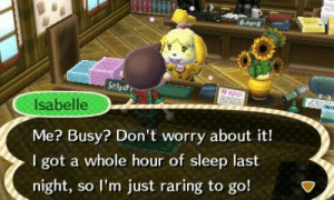 Animal, Spirit, and Sleep: drang  Isabelle  Me? Busy? Don't worry about it!  I got a whole hour of sleep last  night, so lI'm just raring to go! Isabelle is my spirit animal