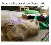 draw me like one of your french girls: Draw me like one of your French girls.