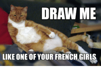 Purrfect pose: DRAW ME  LIKE ONE OF YOUR FRENCH GIRLS Purrfect pose