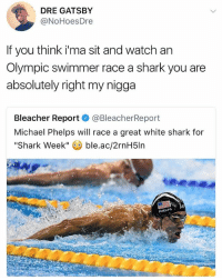 🦈: DRE GATSBY  @NoHoesDre  If you think ima sit and watch an  Olympic swimmer race a shark you are  absolutely right my nigga  Bleacher Report  @BleacherReport  Michael Phelps will race a great white shark for  Shark Week  ble.ac/2rnH5ln 🦈