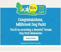 "Thank you so much to everyone who helped vote for Raleigh, NC to get a dog park makeover! Beneful and Walmart will be working with the city of Raleigh to rehab Millbrook Exchange Park, following damage from Hurricane Matthew in October. We are so thrilled that this is happening in our local area! It was a ""come from behind"" victory, so give yourselves a huge pat on the back! Thank you for all the support! Our followers are always awesome at answering our calls for help! We couldn't do what we do without you! #pitbullsofig #pitbullsofinstagram #pitbulls #pitbull #pittielove #pitstagram #puppylove #pitbulllife #pibble #lovabull #dontbullymybreed #clt #rdu #nc #sc #adoptabull #adorabull #adoptdontshop #rescuefosteradopt #ilovemydog #fosteringsaveslives #fosterpup #rescuedog #sotbrescue: dream  Beneful D  project  Congratulations,  Millbrook Dog Park!  You'll be receiving a Beneful Dream  Dog Park Makeover.  Learn more  Click here for official voting rules Thank you so much to everyone who helped vote for Raleigh, NC to get a dog park makeover! Beneful and Walmart will be working with the city of Raleigh to rehab Millbrook Exchange Park, following damage from Hurricane Matthew in October. We are so thrilled that this is happening in our local area! It was a ""come from behind"" victory, so give yourselves a huge pat on the back! Thank you for all the support! Our followers are always awesome at answering our calls for help! We couldn't do what we do without you! #pitbullsofig #pitbullsofinstagram #pitbulls #pitbull #pittielove #pitstagram #puppylove #pitbulllife #pibble #lovabull #dontbullymybreed #clt #rdu #nc #sc #adoptabull #adorabull #adoptdontshop #rescuefosteradopt #ilovemydog #fosteringsaveslives #fosterpup #rescuedog #sotbrescue"