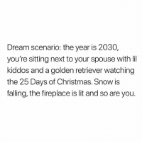 Christmas, Goals, and Lit: Dream scenario: the year is 2030,  you're sitting next to your spouse with lil  kiddos and a golden retriever watching  the 25 Days of Christmas. Snow is  falling, the fireplace is lit and so are you. Goals