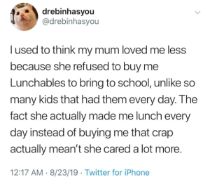 Iphone, School, and Twitter: drebinhasyou  @drebinhasyou  lused to think my mum loved me less  because she refused to buy me  Lunchables to bring to school, unlike so  many kids that had them every day. The  fact she actually made me lunch every  day instead of buying me that crap  actually mean't she cared a lot more.  12:17 AM 8/23/19 Twitter for iPhone