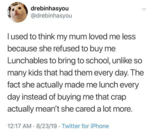 Iphone, School, and Twitter: drebinhasyou  @drebinhasyou  lused to think my mum loved me less  because she refused to buy me  Lunchables to bring to school, unlike so  many kids that had them every day. The  fact she actually made me lunch every  day instead of buying me that crap  actually mean't she cared a lot more.  12:17 AM 8/23/19 Twitter for iPhone  > Everything in retrospect