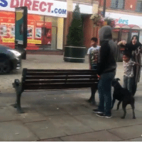Family, Memes, and Muslim: DRECT.co A Muslim family has a conflict with a man walking his dog in the UK..