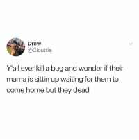 Memes, My House, and Home: Drew  @Clouttie  Y'all ever kill a bug and wonder if their  mama is sittin up waiting for them to  come home but they dead Well no one told them they had to come into my house uninvited 🤷🏼♂️