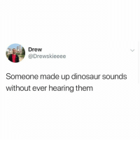 Dinosaur, Humans of Tumblr, and Them: Drew  Drewskieeee  Someone made up dinosaur sounds  without ever hearing them