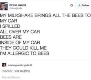 Funny, Laughter, and All The: Drew Janda  ' Follow  MY MILKSHAKE BRINGS ALL THE BEES TO  MY CAR  SPILLED  ALL OVER MY CAR  BEES ARE  INSIDE OF MY CAR  THEY COULD KILL ME  I'M ALLERGIC TO BEES  newenglander-gets-ft  CANNOT stop laughing  Source lolfactory 13 Funny Tweets All About Bees That Will Have You Buzzing With Laughter - I Can Has Cheezburger?