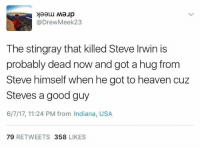 Heaven, Steve Irwin, and Good: @DrewMeek23  The stingray that killed Steve Irwin is  probably dead now and got a hug from  Steve himself when he got to heaven cuz  Steves a good guy  6/7/17, 11:24 PM from Indiana, USA  79 RETWEETS 358 LIKES