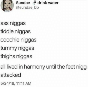 harmony: drink water  @sundae_bb  ass niggas  tiddie niggas  coochie niggas  tummy niggas  thighs niggas  all lived in harmony until the feet nigg  attacked  5/24/18, 11:11 AM