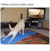 Funny, Water, and Girl Memes: drinks coconut water once* My chakras are so balanced right now