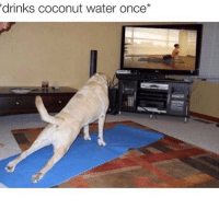 Coconut Water, Waters, and Coconut: drinks coconut water once tastes so bad
