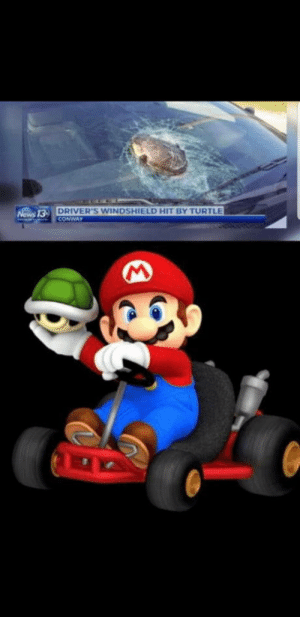 Real life mario: DRIVER'S WINDSHIELD HIT BY TURTLE  CONWAY  Nows 13- Real life mario