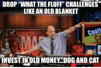 """Money Dog: DROP """"WHAT THE FLUFF"""" CHALLENGES  LIKE AN OLD BLANKET  Coa  INVEST INOLD MONEY..DOG AND CAT"""