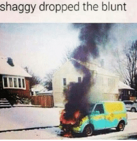 Click, Memes, and Best: dropped the blunt  shaggy the Let Tommy Chong hook you up with the best pipe in the world!  Click here to enter: https://goo.gl/RYRyw7
