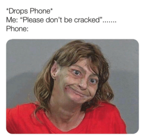 "meirl: *Drops Phone*  Me: ""Please don't be cracked"".  Phone: meirl"