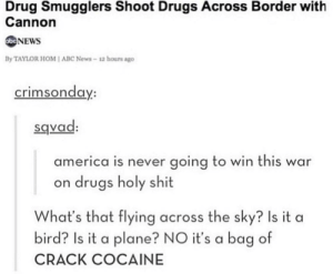 Abc, America, and Drugs: Drug Smugglers Shoot Drugs Across Border with  Cannon  NEWS  By TAYLOR HOM I ABC News-12 hours ago  crimsonda  y:  sqvad  america is never going to win this war  on drugs holy shit  What's that flying across the sky? Is it a  bird? Is it a plane? NO it's a bag of  CRACK COCAINE Cannonball