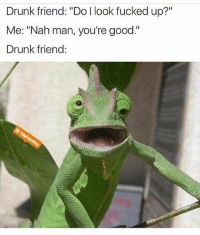 """Drunk, Funny, and Good: Drunk friend: """"Do I look fucked up?""""  Me: """"Nah man, you're good.""""  Drunk friend: Lmfao 😂😂👀"""