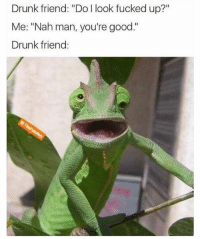 """Drunk, Funny, and Good: Drunk friend: """"Do I look fucked up?""""  Me: """"Nah man, you're good.""""  Drunk friend: You're good..."""