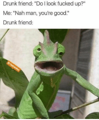 """Drunk, Memes, and Good: Drunk friend: """"Do l look fucked up?""""  Me: """"Nah man, you're good.""""  Drunk friend: You're good... 😂 (@thisfuknguy)"""