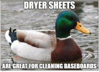 "Advice, Tumblr, and Animal: DRYER SHEETS  ARE GREAT FOR CLEANING BASEBOARDS <p><a href=""http://advice-animal.tumblr.com/post/166033868639/actual-advice-mallard-its-useful-really"" class=""tumblr_blog"">advice-animal</a>:</p>  <blockquote><p>Actual Advice Mallard- It's useful really</p></blockquote>"