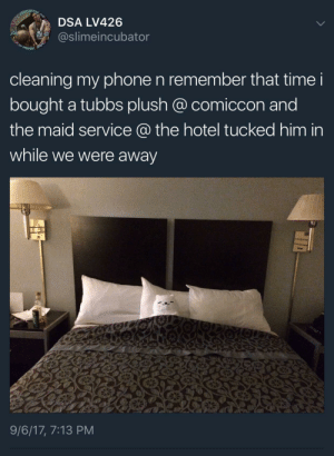 Memes, Phone, and Tumblr: DSA LV426  @slimeincubator  cleaning my phone n remember that time i  bought a tubbs plush @ comiccon and  the maid service a the hotel tucked him in  while we were away  9/6/17, 7:13 PM positive-memes: Wholesome Room Service