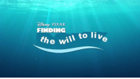 Finding The Will To Live