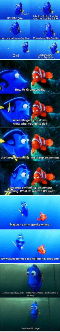 RETWEET IF YOU LOVE DORY 🐟🌊💙: dsneydhavs  I shall call him Squishy  Hey little guy.  and he shal be mine,  and he shall be my Squishy  Come here, little Squishy  Bad Squishy,  Ow!  bad Squishy!   Hey, Mr Grumpy Gills  When life gets you down,  know what you gotta do?  Just keep swimming. Just keep swimming.  Just keep swimming, swimming,  swimming. What do we do? We swim.   o  Maybe he only speaks whale.  WWWWWeeee need too fiiiiind his sooooon.   And-and I look at you, and I... and I'm home. Please, I don't want that to  go away.  don't want to forget. RETWEET IF YOU LOVE DORY 🐟🌊💙
