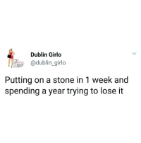 Memes, 🤖, and Dublin: Dublin Girlo  ltio odublin.girlo  Putting on a stone in 1 week and  spending a year trying to lose it Stun Hun Problems