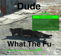 """hey dog play dead"" *falls over* ""play free bird"" *sweet guitar solo* ""play doctor"" *removes my kidney* ""play girls"" *texts 3 side bitches* dogmeat play fun dogs thebest fallout fallout3 falloutnewvegas fallout4 falloutmemes meme dank gaming gamer: Dude  DEADMEAT  Synth Component  What The Fu ""hey dog play dead"" *falls over* ""play free bird"" *sweet guitar solo* ""play doctor"" *removes my kidney* ""play girls"" *texts 3 side bitches* dogmeat play fun dogs thebest fallout fallout3 falloutnewvegas fallout4 falloutmemes meme dank gaming gamer"