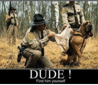 Dude, Him, and Border Patrol: DUDE  Find him yourself