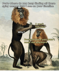 Why is Rafiki from Lion King in this classical painting? That's the real question here: Dude where do you keep finding all these  spicy memes that I see on your timeline  I Cant  tell you  Why?  Because then you won t  need me anymore Why is Rafiki from Lion King in this classical painting? That's the real question here