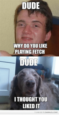Dude, Memes, and Http: DUDE  WHY DO YOU LIKE  PLAYING FETCH  DUDE  I THOUGHT YOU  LIKED IT  YUNO GO TO DAMANLOLCOM? Is that his dog?
