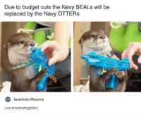 Navy Otters: Due to budget cuts the Navy SEALs will be  replaced by the Navy OTTERs  to  tastefully offensive  (via shadowfogkiller)