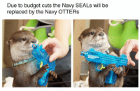 Otters, Budget, and Navy: Due to budget cuts the Navy SEALs will be  replaced by the Navy OTTERs <p>Times Are Tough For The U.S. Military.</p>