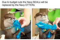 Otters, Budget, and Navy: Due to budget cuts the Navy SEALs will be  replaced by the Navy OTTERs <p>Bestest water bois</p>
