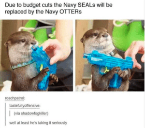 Otters, Budget, and Navy: Due to budget cuts the Navy SEALs will be  replaced by the Navy OTTERs  roachpatrol:  tastefullyoffensive:  (via shadowfogkiller)  well at least he's taking it seriously (insert Navy Otters copypasta)
