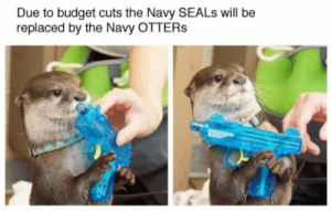 srsfunny:Times Are Tough For The U.S. Military: Due to budget cuts the Navy SEALs will be  replaced by the Navy OTTERs srsfunny:Times Are Tough For The U.S. Military