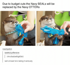 Due to budget cuts by garthpancake MORE MEMES: Due to budget cuts the Navy SEALs will be  replaced by the Navy OTTERS  roachpatrol  tastefullyoffensive:  (via shadowfogkiller)  well at least he's taking it seriously Due to budget cuts by garthpancake MORE MEMES