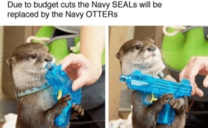 Otters, Budget, and Navy: Due to budget cuts the Navy SEALs will be  replaced by the Navy OTTERs