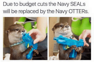 Budget Cuts: Due to budget cuts the Navy SEALS  will be replaced by the Navy OTTERS.