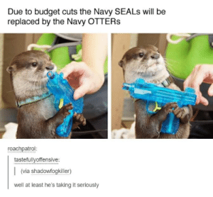 Budget Cuts: Due to budget cuts the Navy SEALS will be  replaced by the Navy OTTERS  roachpatrol:  tastefullyoffensive:  (via shadowfogkiller)  well at least he's taking it seriously